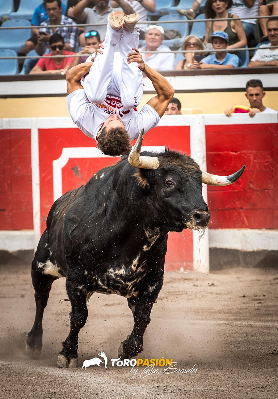Los saltos son algunas de las suertes más espectaculares del toreo a cuerpo limpio.