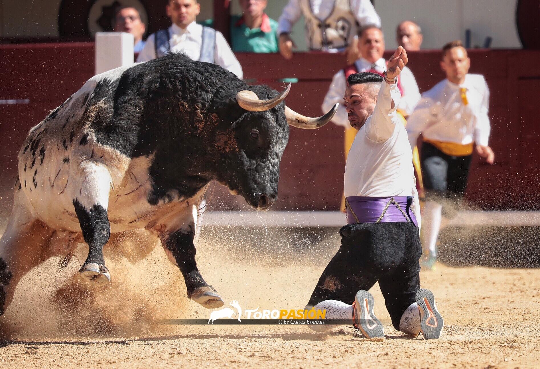 El ganador tuvo una actuación llena de coraje y valor, en una final muy reñida en la que cualquiera pudo resultar vencedor.