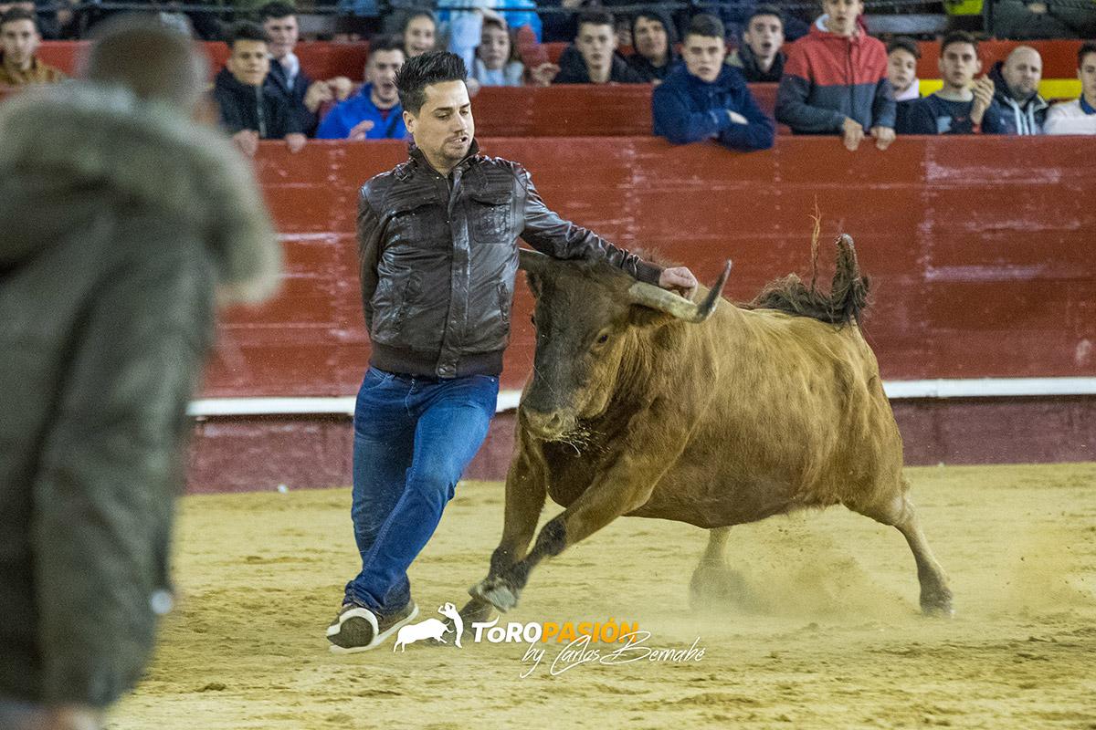 Adrenalina y casta a raudales con las mejores vacas del momento.