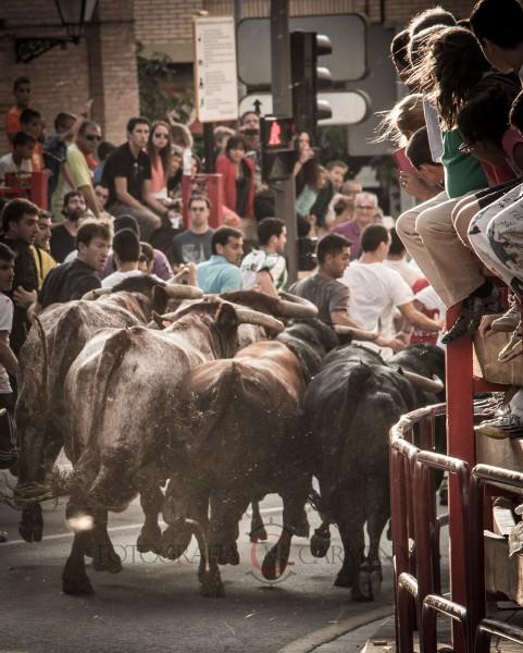 Los encierros de Alfaro son una cita obligada en el calendario taurino y congregan a miles de personas cada año.