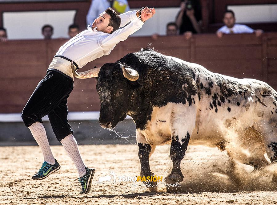 La final del Campeonato de España es una apuesta al límite de todos los participantes.