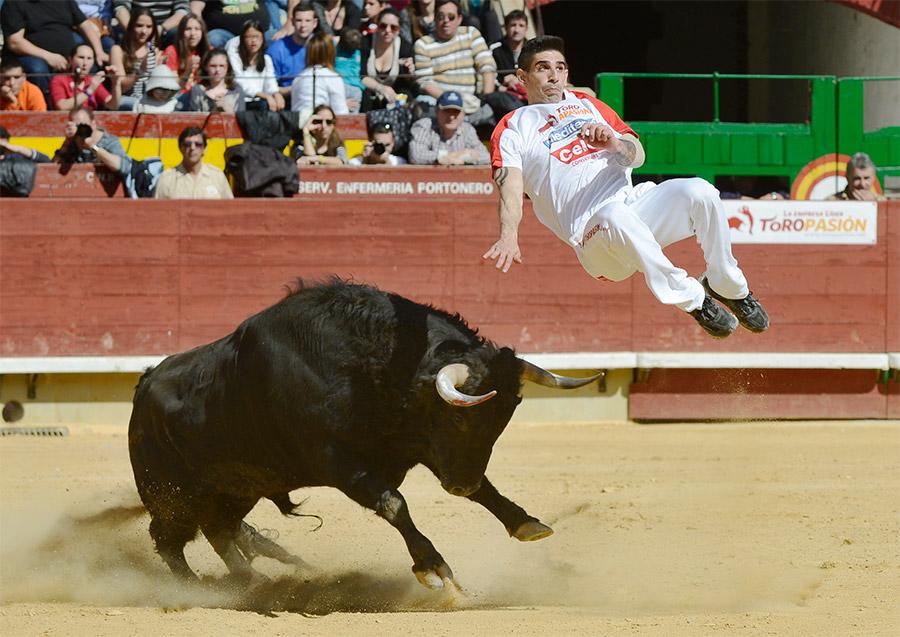 La emoción de Toropasión regresa a Castellón con tres festejos de máxima calidad.