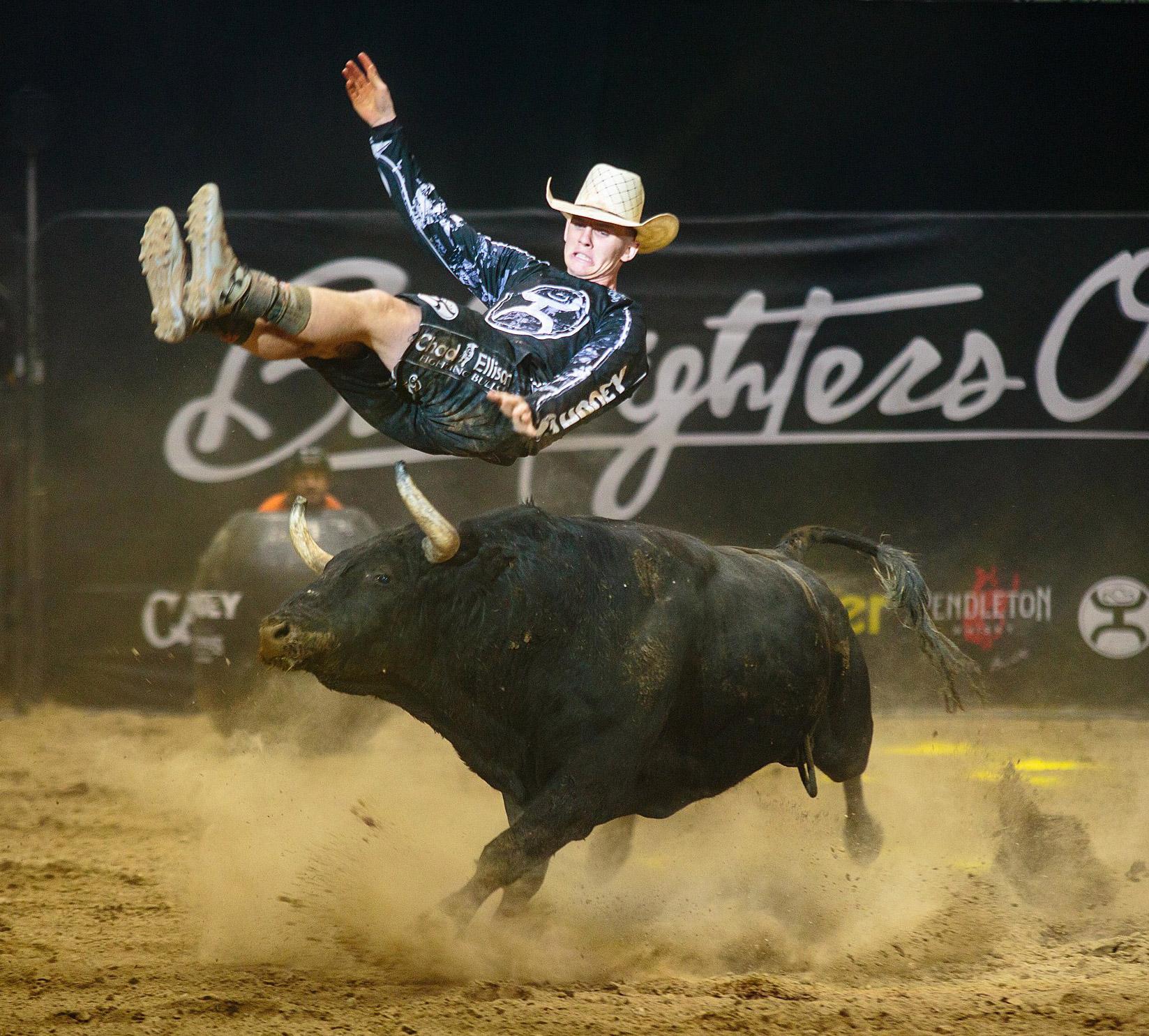 Por primera vez 3 de los mejores bullfighters de EEUU se enfrentarán a capones de Arriazu embolados a fuego la noche del 20 de marzo en Castellón.